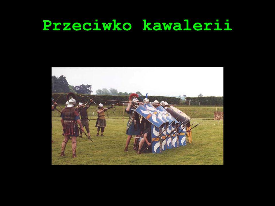 Przeciwko kawalerii
