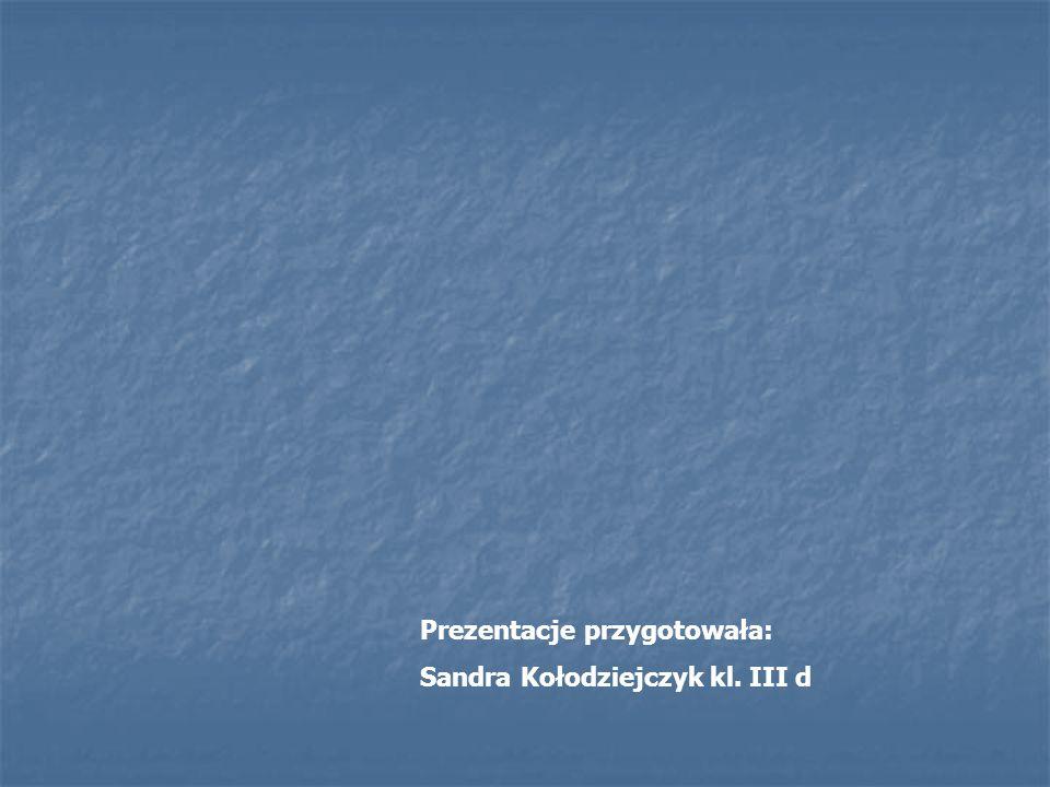 Prezentacje przygotowała: Sandra Kołodziejczyk kl. III d