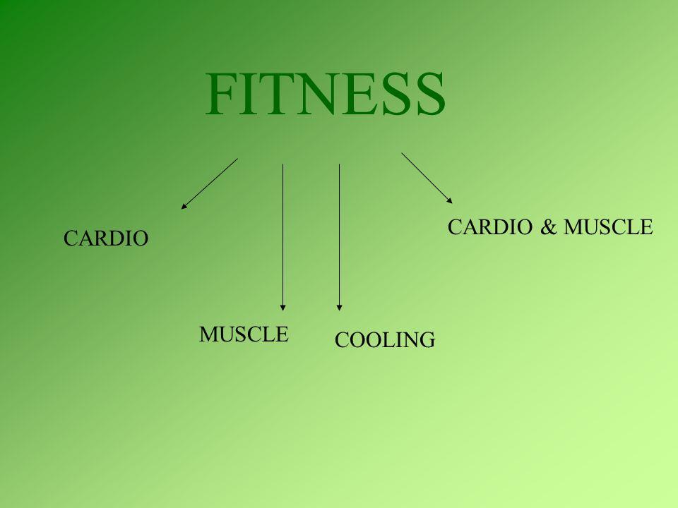CARDIO W grupie CARDIO są formy wzmacniające przede wszystkim układ krążenia.