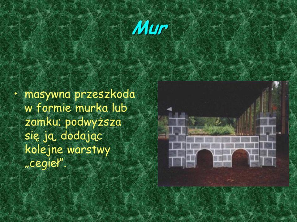Mur masywna przeszkoda w formie murka lub zamku; podwyższa się ją, dodając kolejne warstwy cegieł.