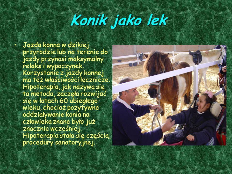 Konik jako lek Jazda konna w dzikiej przyrodzie lub na terenie do jazdy przynosi maksymalny relaks i wypoczynek. Korzystanie z jazdy konnej ma też wła