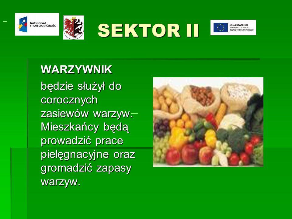 SEKTOR II WARZYWNIK będzie służył do corocznych zasiewów warzyw.