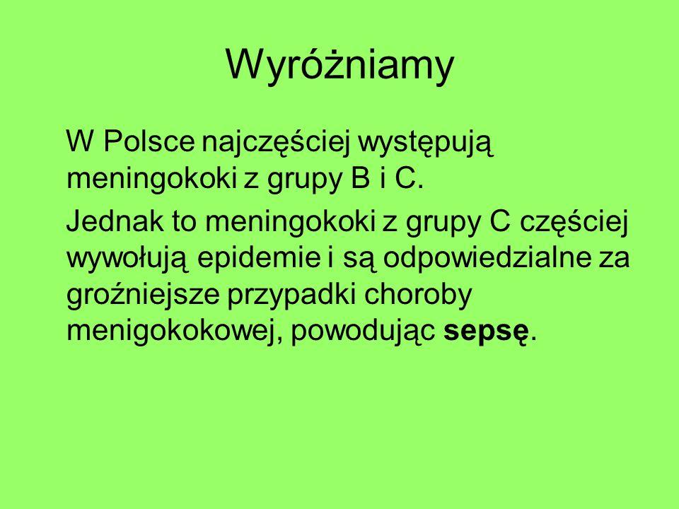 Wyróżniamy W Polsce najczęściej występują meningokoki z grupy B i C. Jednak to meningokoki z grupy C częściej wywołują epidemie i są odpowiedzialne za