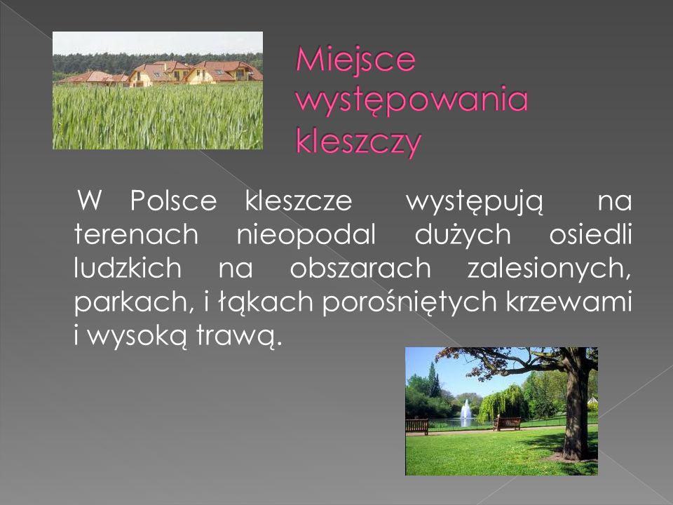 W Polsce kleszcze występują na terenach nieopodal dużych osiedli ludzkich na obszarach zalesionych, parkach, i łąkach porośniętych krzewami i wysoką trawą.