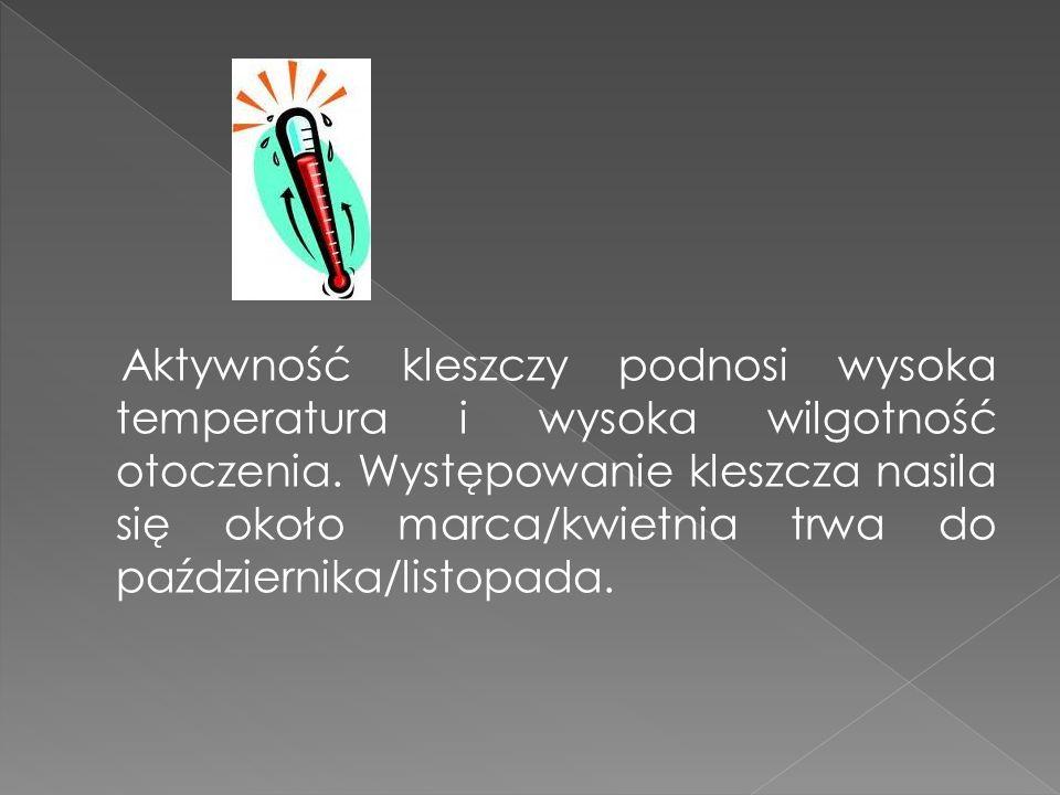 Borelioza i kleszczowe zapalenie mózgu (KZM) to w Polsce najczęstsze choroby przenosz one przez kleszcze na człowieka.