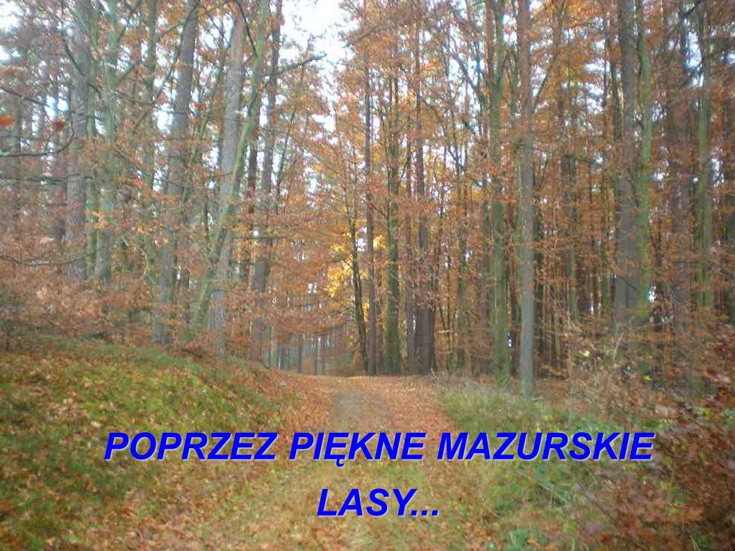POPRZEZ PIĘKNE MAZURSKIE LASY...
