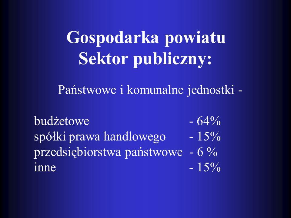 Państwowe i komunalne jednostki - budżetowe - 64% spółki prawa handlowego - 15% przedsiębiorstwa państwowe - 6 % inne - 15% Gospodarka powiatu Sektor
