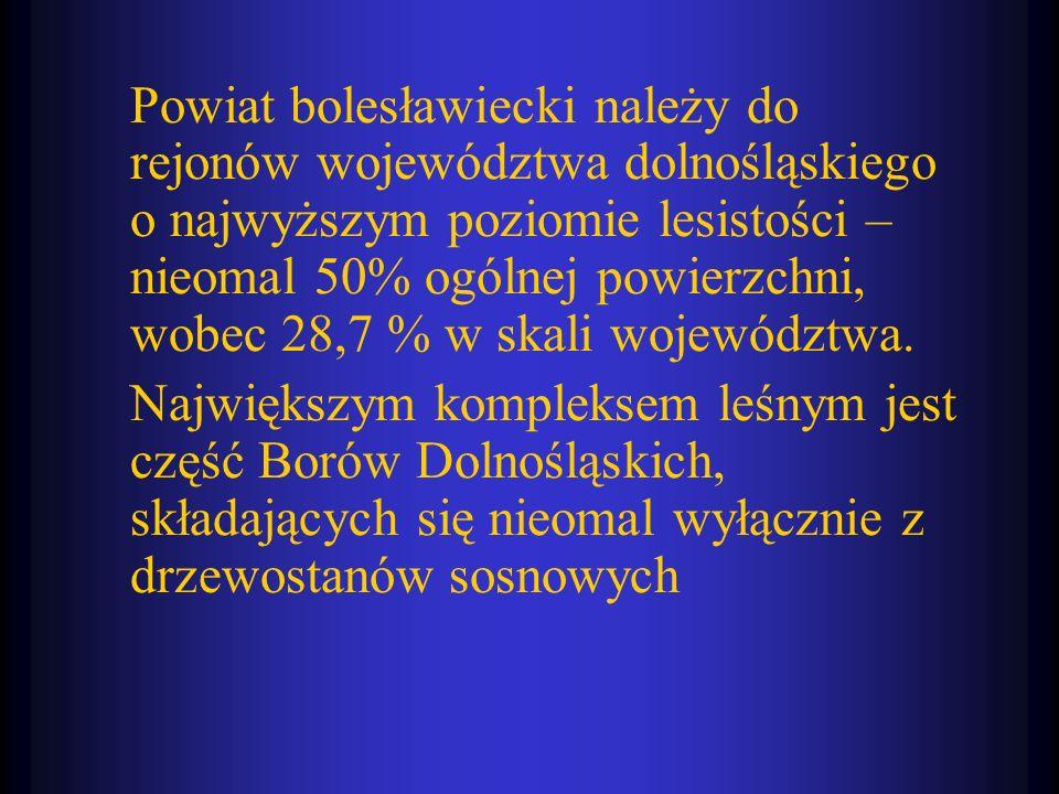 Powiat bolesławiecki należy do rejonów województwa dolnośląskiego o najwyższym poziomie lesistości – nieomal 50% ogólnej powierzchni, wobec 28,7 % w s