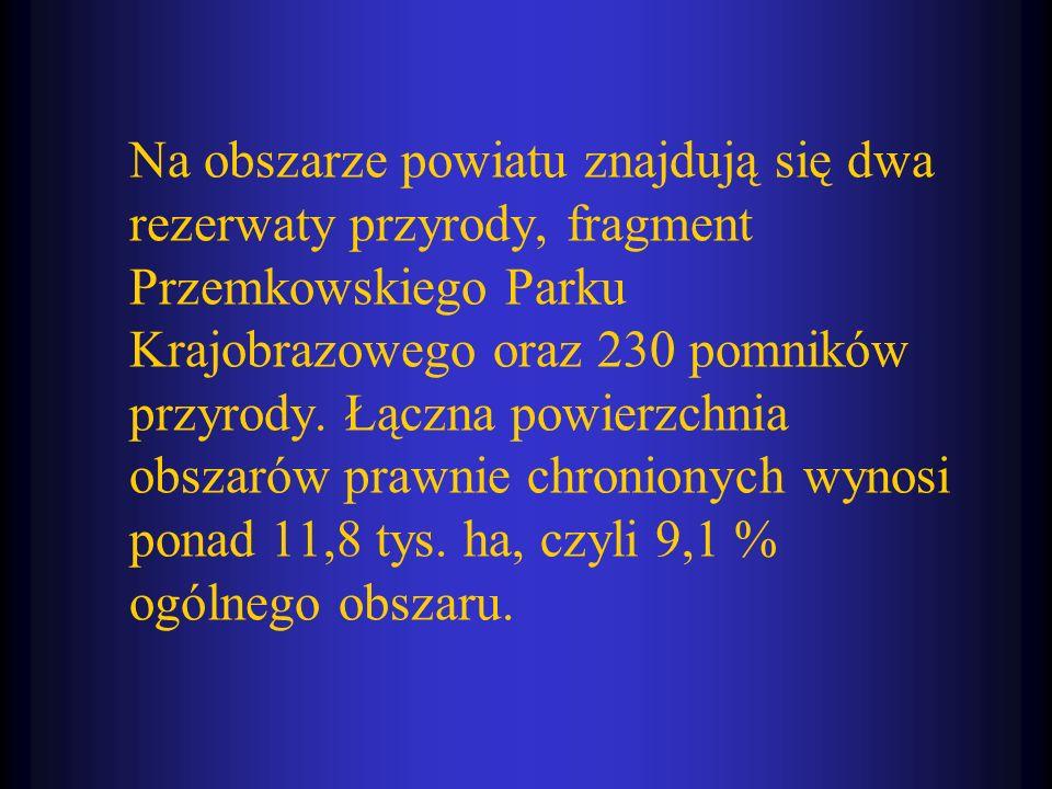 Na obszarze powiatu znajdują się dwa rezerwaty przyrody, fragment Przemkowskiego Parku Krajobrazowego oraz 230 pomników przyrody. Łączna powierzchnia