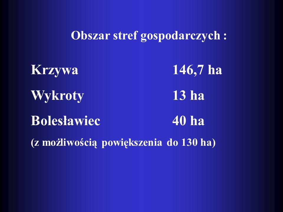 Obszar stref gospodarczych : Krzywa 146,7 ha Wykroty 13 ha Bolesławiec 40 ha (z możliwością powiększenia do 130 ha)