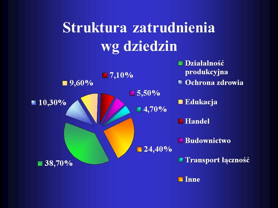 Struktura zatrudnienia wg dziedzin