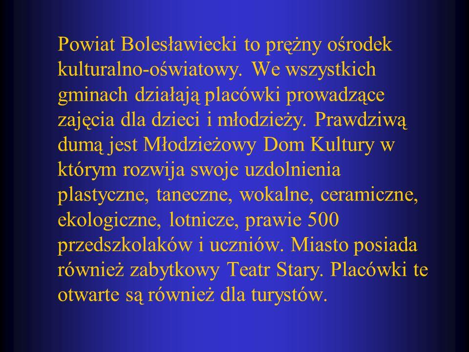 Powiat Bolesławiecki to prężny ośrodek kulturalno-oświatowy. We wszystkich gminach działają placówki prowadzące zajęcia dla dzieci i młodzieży. Prawdz