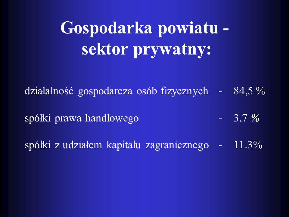 Gospodarka powiatu - sektor prywatny: działalność gospodarcza osób fizycznych - 84,5 % spółki prawa handlowego - 3,7 % spółki z udziałem kapitału zagr