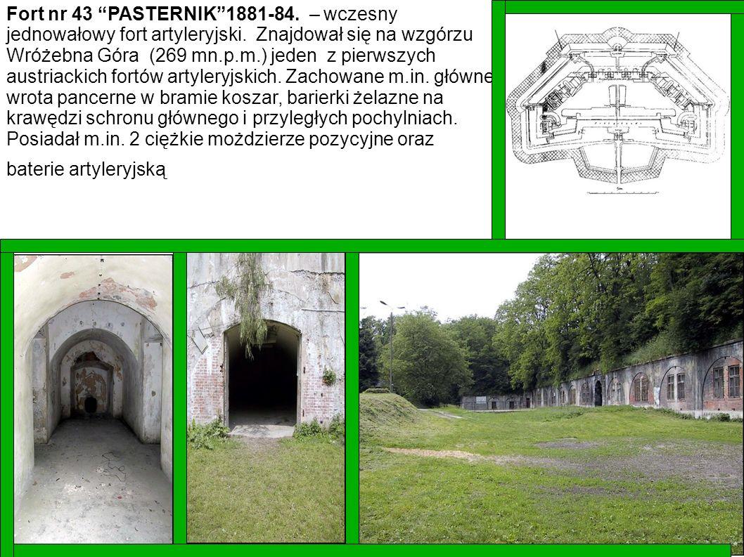 Fort nr 43 PASTERNIK1881-84. – wczesny jednowałowy fort artyleryjski. Znajdował się na wzgórzu Wróżebna Góra (269 mn.p.m.) jeden z pierwszych austriac