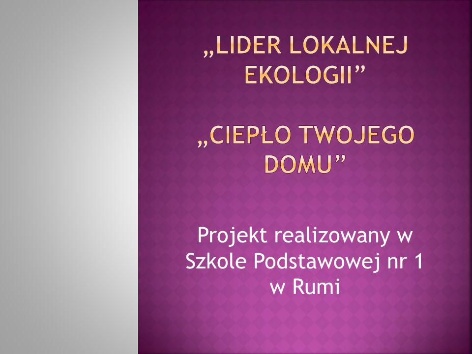 Akcja ulotkowa i plakatowa na terenie Szkoły; Gazetka szkolna nt.