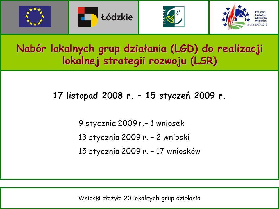 Nabór lokalnych grup działania (LGD) do realizacji lokalnej strategii rozwoju (LSR) 17 listopad 2008 r.
