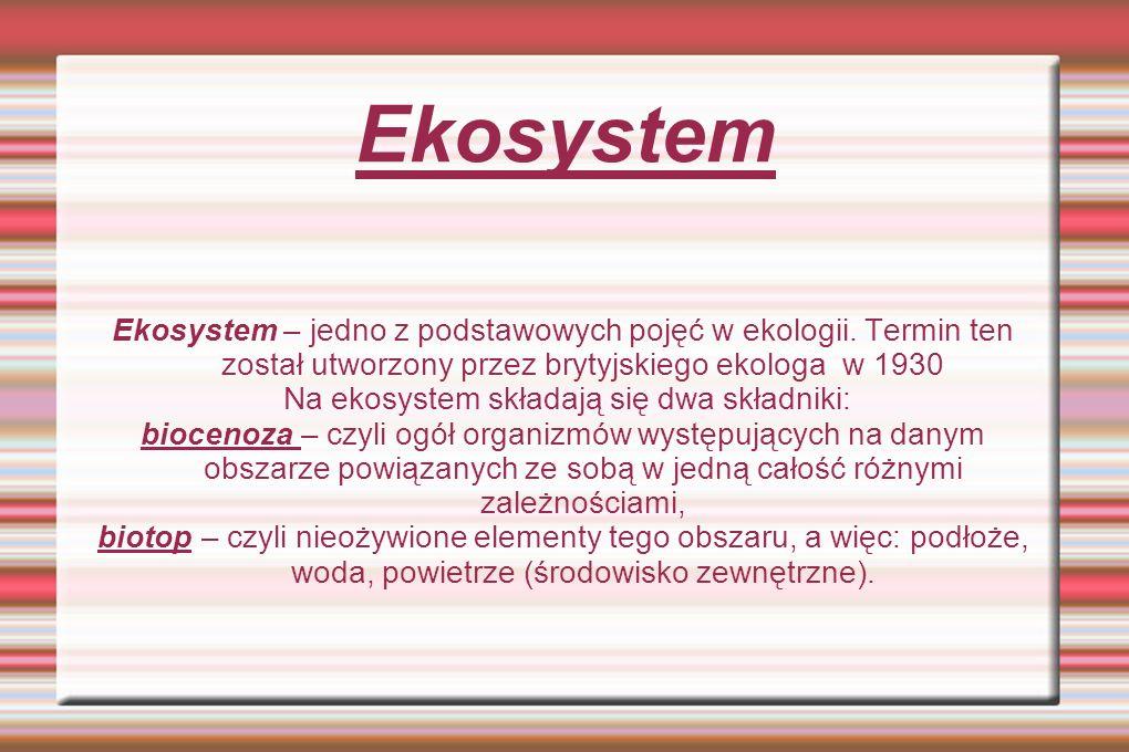 Ekosystem Ekosystem – jedno z podstawowych pojęć w ekologii. Termin ten został utworzony przez brytyjskiego ekologa w 1930 Na ekosystem składają się d