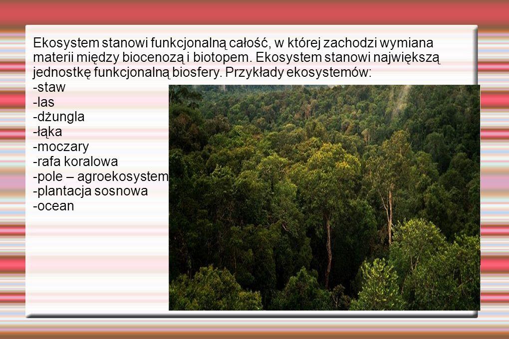Ekosystem stanowi funkcjonalną całość, w której zachodzi wymiana materii między biocenozą i biotopem. Ekosystem stanowi największą jednostkę funkcjona