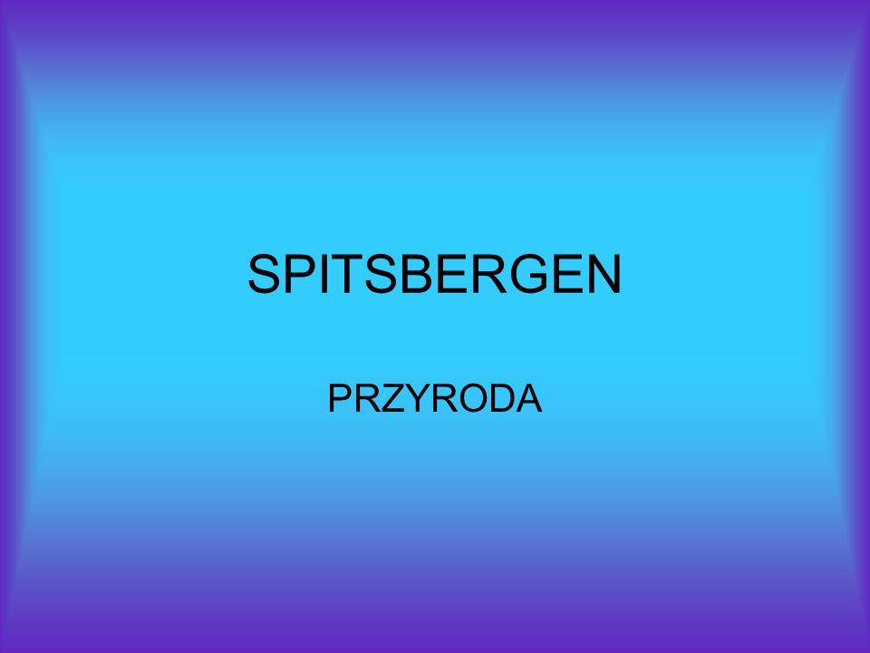 SPITSBERGEN PRZYRODA