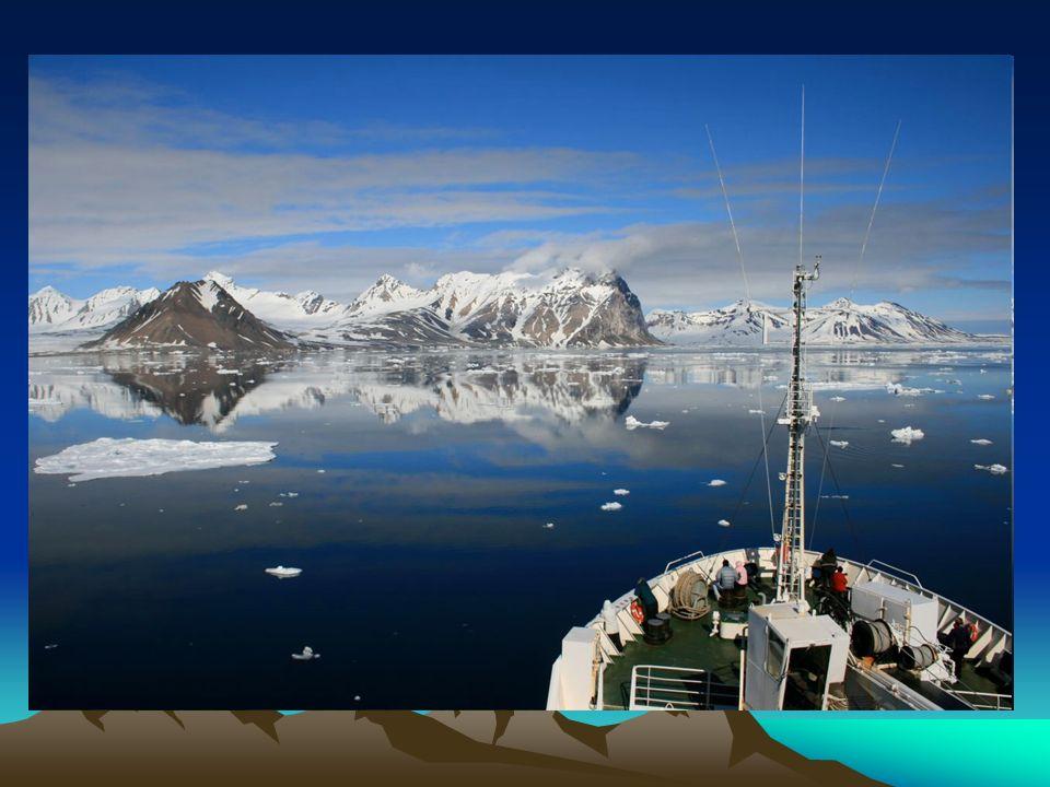 Zając polarny Zając polarny – gatunek ssaka z rodziny zającowatych, występującego w strefie tundry i tajgi.