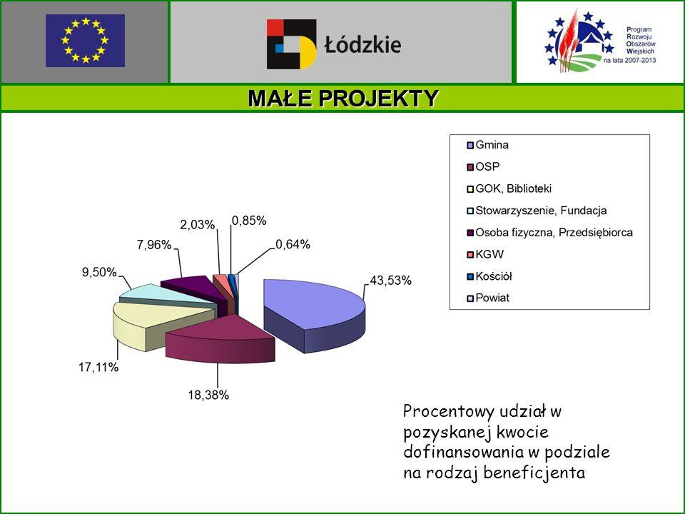 MAŁE PROJEKTY Procentowy udział w pozyskanej kwocie dofinansowania w podziale na rodzaj beneficjenta