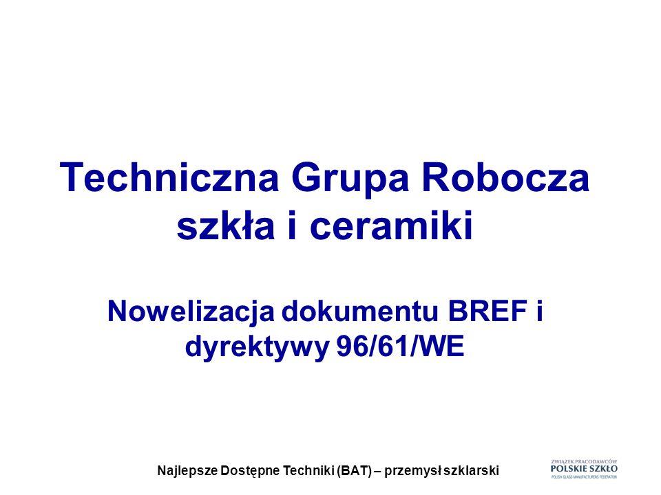 Najlepsze Dostępne Techniki (BAT) – przemysł szklarski TERMIN ZBIERANIA DANYCH Ostateczny termin nadsyłania danych i opracowań do Europejskiego Biura IPPC w Sewilli to 18 lipca 2007