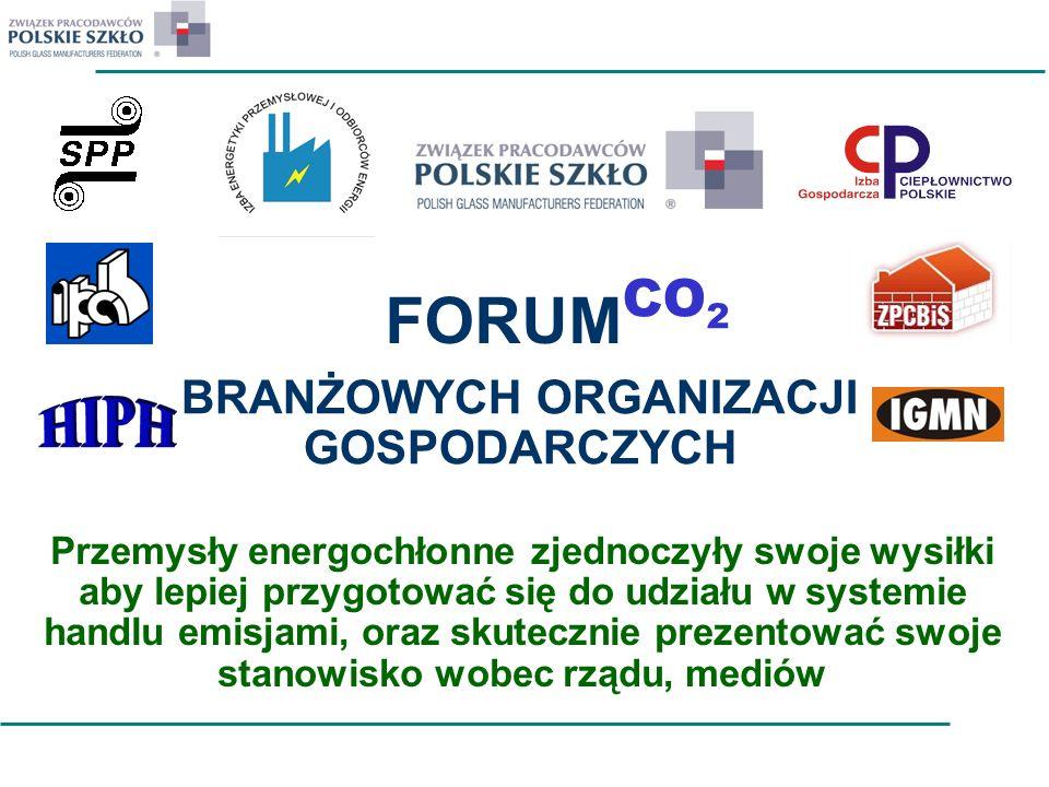 FORUM BRANŻOWYCH ORGANIZACJI GOSPODARCZYCH CO 2 Przemysły energochłonne zjednoczyły swoje wysiłki aby lepiej przygotować się do udziału w systemie han