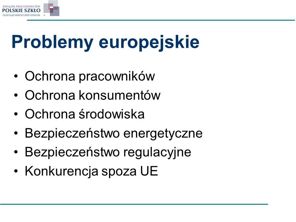 Problemy europejskie Ochrona pracowników Ochrona konsumentów Ochrona środowiska Bezpieczeństwo energetyczne Bezpieczeństwo regulacyjne Konkurencja spo