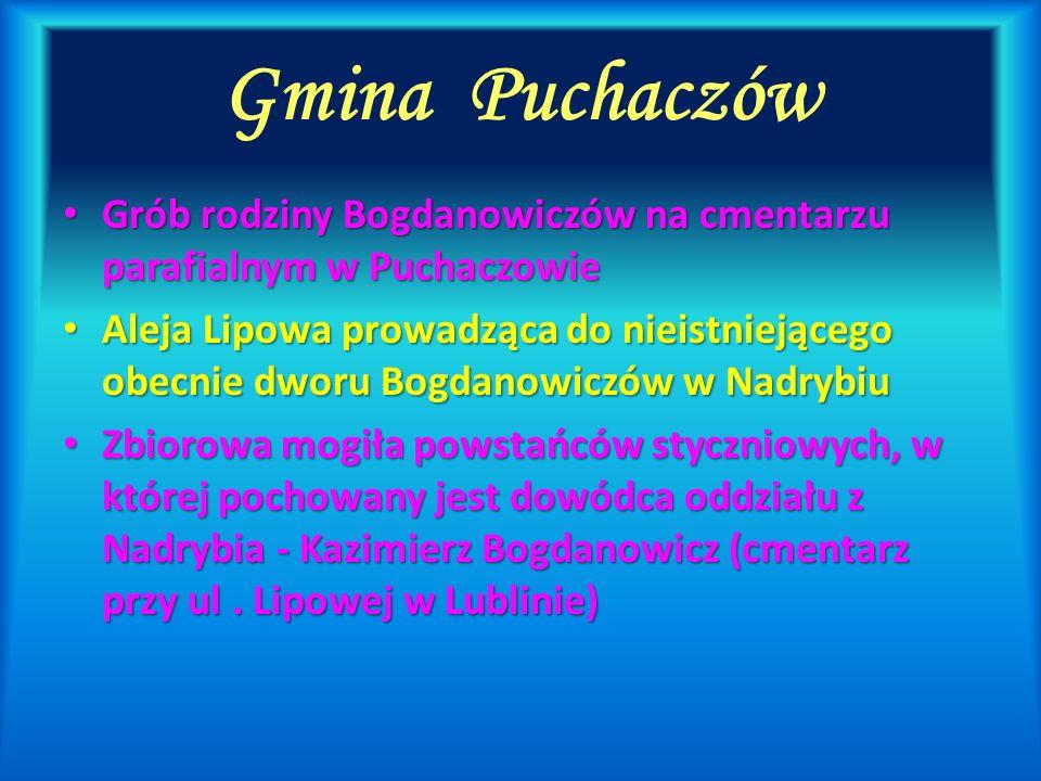 Gmina Puchaczów Grób rodziny Bogdanowiczów na cmentarzu parafialnym w Puchaczowie Grób rodziny Bogdanowiczów na cmentarzu parafialnym w Puchaczowie Al