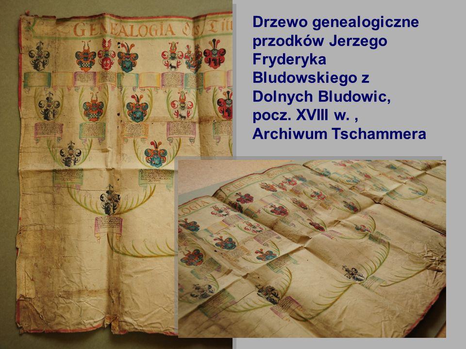 7 Drzewo genealogiczne przodków Jerzego Fryderyka Bludowskiego z Dolnych Bludowic, pocz. XVIII w., Archiwum Tschammera