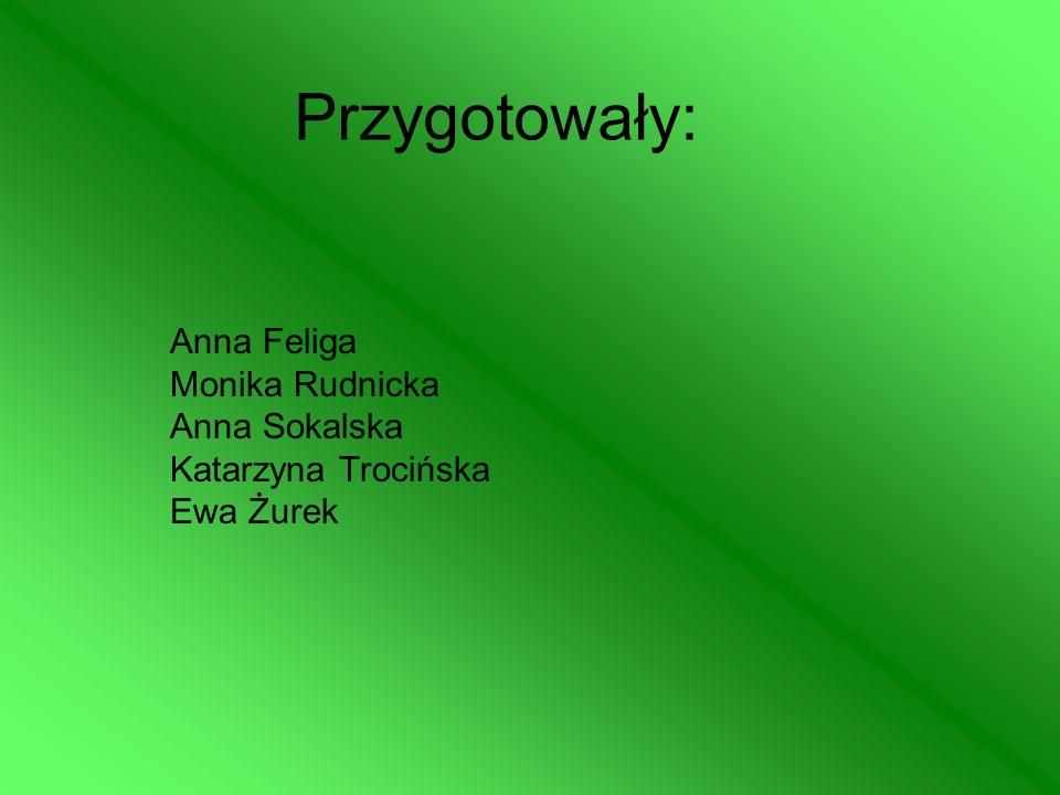 Przygotowały: Anna Feliga Monika Rudnicka Anna Sokalska Katarzyna Trocińska Ewa Żurek