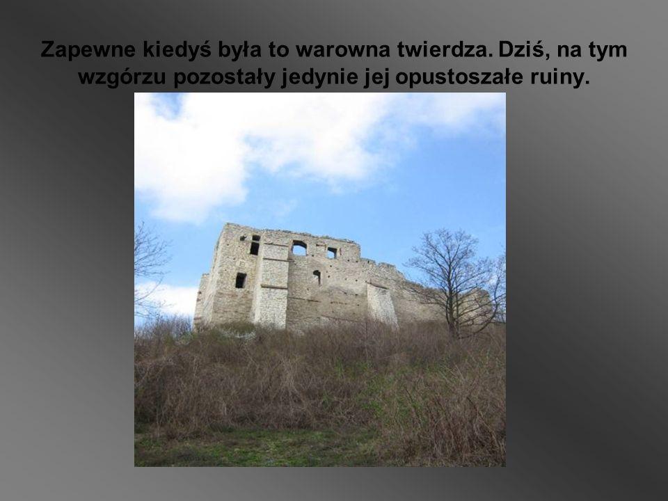 Zapewne kiedyś była to warowna twierdza. Dziś, na tym wzgórzu pozostały jedynie jej opustoszałe ruiny.