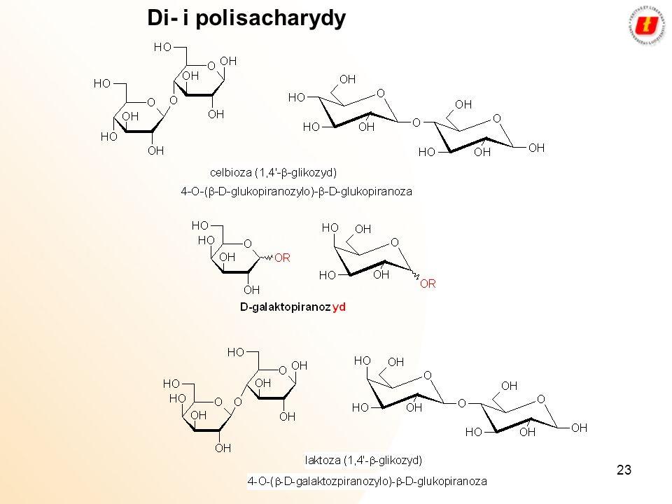 23 Di- i polisacharydy