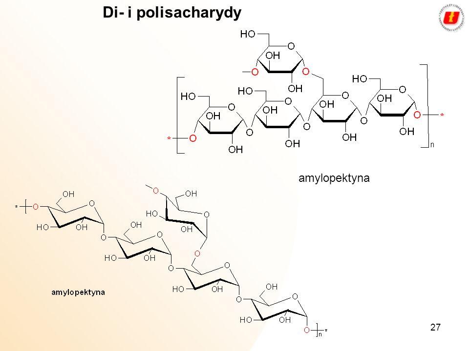 27 Di- i polisacharydy amylopektyna