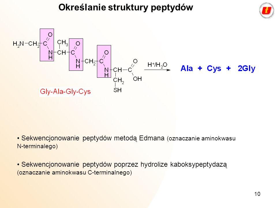 10 Określanie struktury peptydów Sekwencjonowanie peptydów metodą Edmana (oznaczanie aminokwasu N-terminalego) Sekwencjonowanie peptydów poprzez hydro