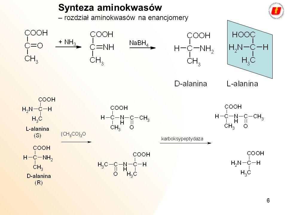 6 Synteza aminokwasów – rozdział aminokwasów na enancjomery