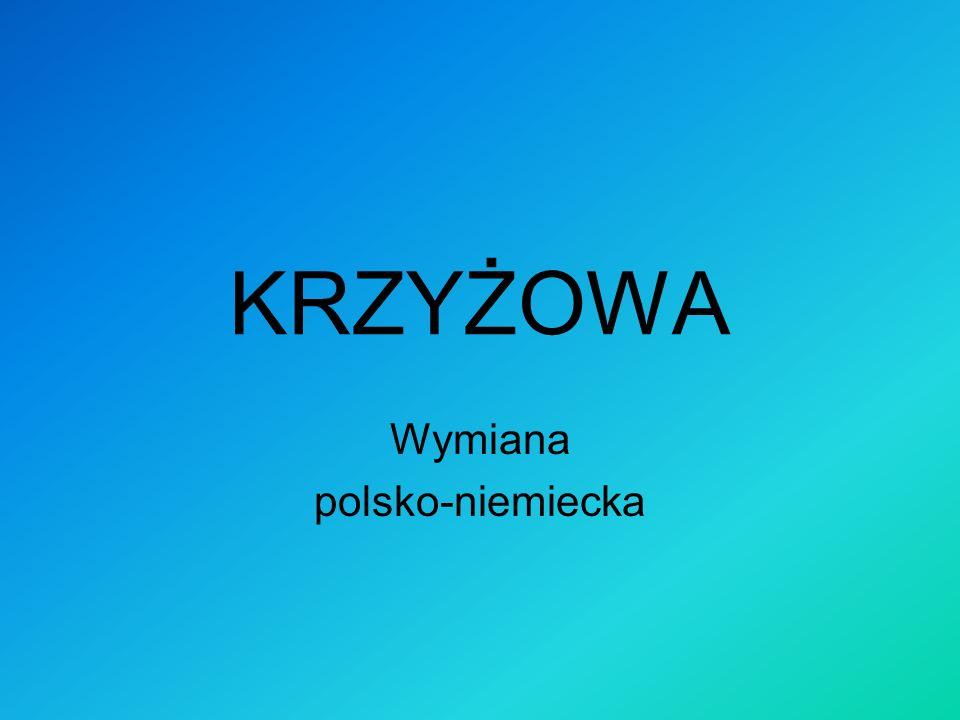 Polsko-niemiecka wymiana młodzieży w LO im.K. I. Gałczyńskiego w Otwocku.