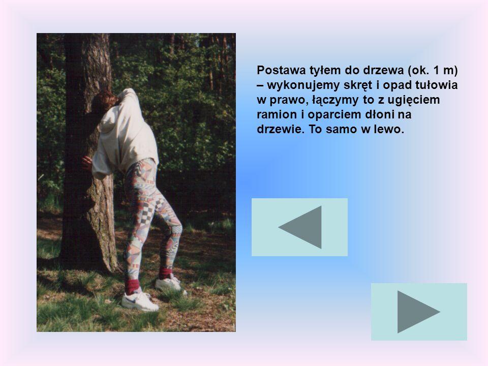 Postawa tyłem do drzewa (ok. 1 m) – wykonujemy skręt i opad tułowia w prawo, łączymy to z ugięciem ramion i oparciem dłoni na drzewie. To samo w lewo.
