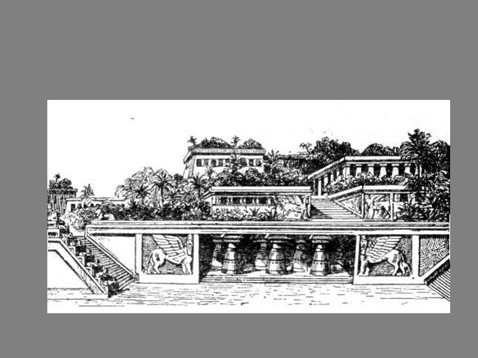 Wiszące ogrody Semiramidy Nabuchodonozor II zbudował dla żony Amytis.