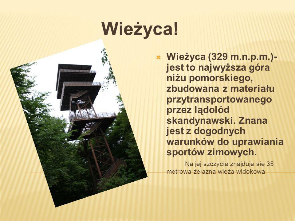 Wieżyca! Wieżyca (329 m.n.p.m.)- jest to najwyższa góra niżu pomorskiego, zbudowana z materiału przytransportowanego przez lądolód skandynawski. Znana