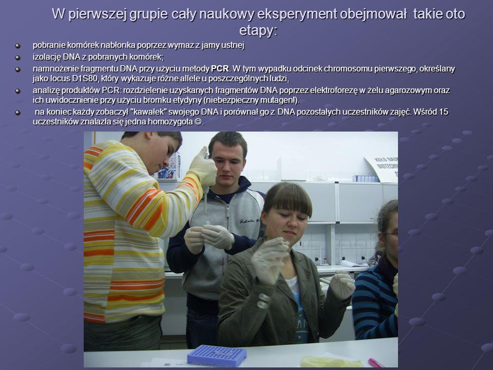 W pierwszej grupie cały naukowy eksperyment obejmował takie oto etapy: pobranie komórek nabłonka poprzez wymaz z jamy ustnej izolację DNA z pobranych komórek; namnożenie fragmentu DNA przy użyciu metody PCR.