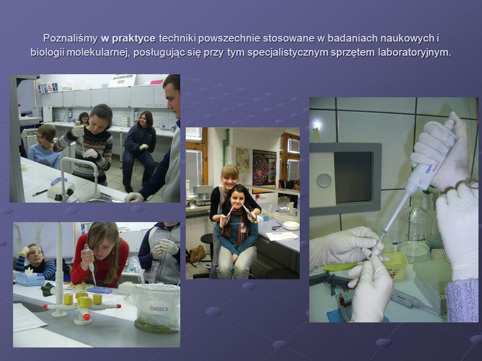 Poznaliśmy w praktyce techniki powszechnie stosowane w badaniach naukowych i biologii molekularnej, posługując się przy tym specjalistycznym sprzętem laboratoryjnym.