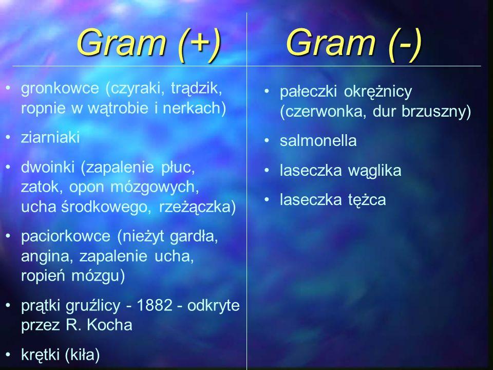 Gram (+) Gram (-) gronkowce (czyraki, trądzik, ropnie w wątrobie i nerkach) ziarniaki dwoinki (zapalenie płuc, zatok, opon mózgowych, ucha środkowego,
