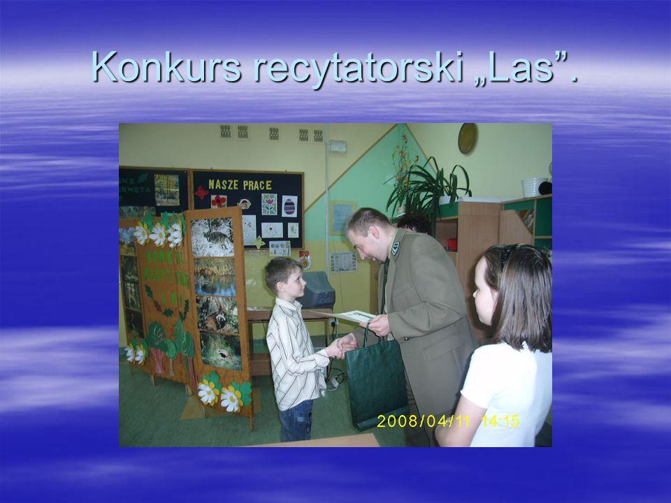 Zajęcia edukacji leśnej w Świbnej wraz z przedszkolem.