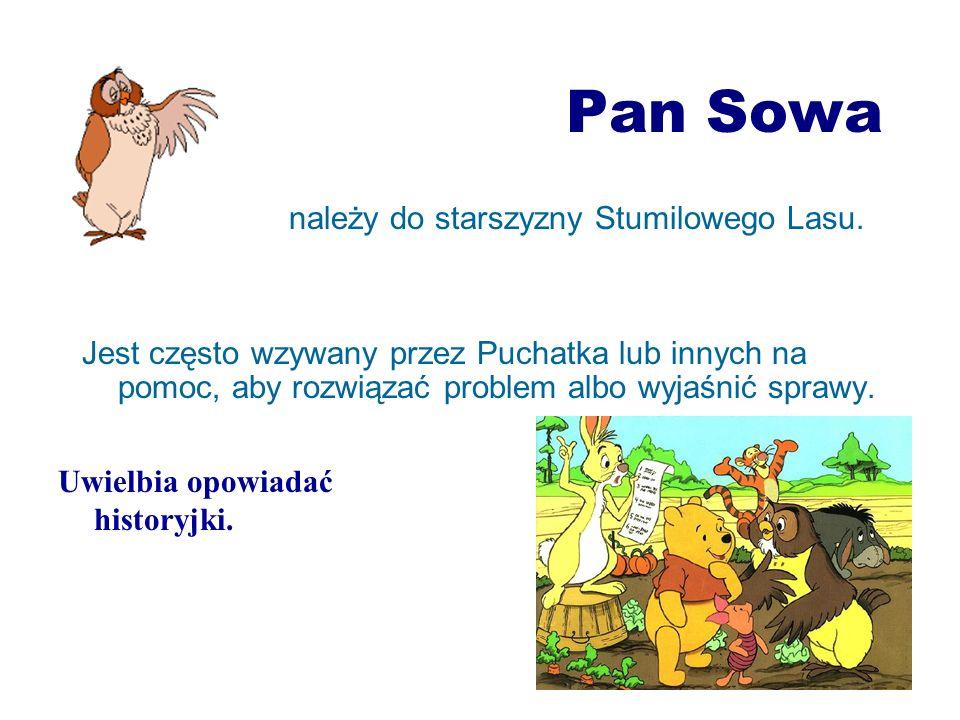 Pan Sowa należy do starszyzny Stumilowego Lasu. Jest często wzywany przez Puchatka lub innych na pomoc, aby rozwiązać problem albo wyjaśnić sprawy. Uw