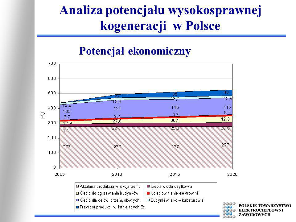 Analiza potencjału wysokosprawnej kogeneracji w Polsce Potencjał ekonomiczny