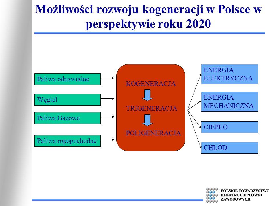 Przetwarzanie energii w procesie wysokosprawnej kogeneracji: Elektrownie Elektrociepłownie Autoproducenci Kogeneracja małej mocy Możliwości rozwoju kogeneracji w Polsce w perspektywie roku 2020