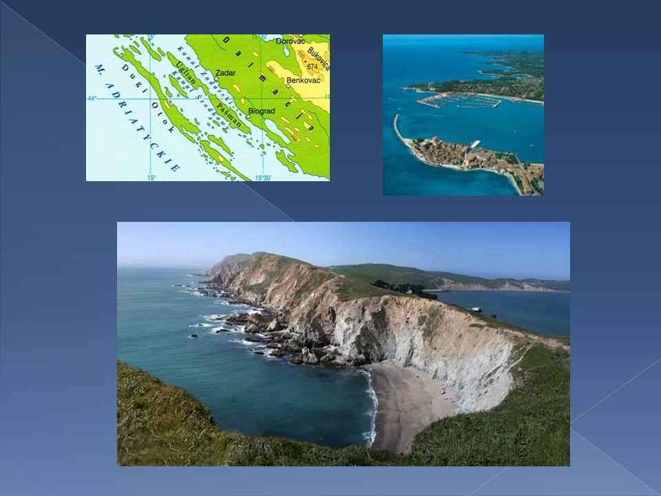 Powstaje w wyniku zatopienia dolnych odcinków dolin wciętych w masywy górskie biegnące prostopadle do brzegu.