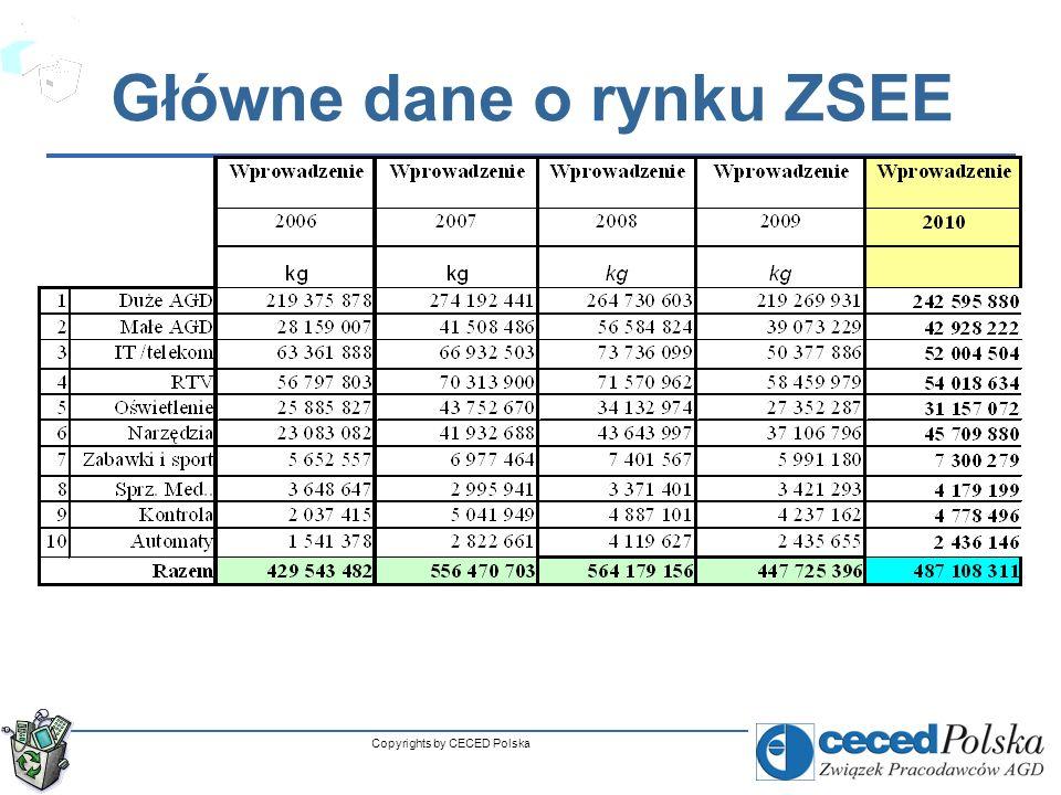 Copyrights by CECED Polska Główne dane o rynku ZSEE