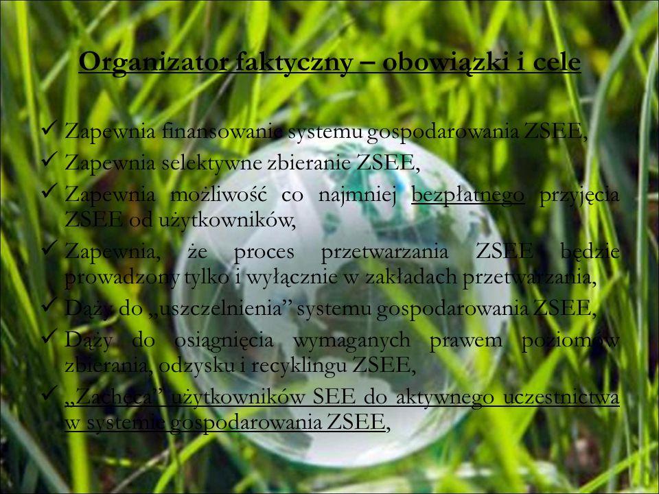 Elementy systemu gospodarowania ZSEE Właściwie oznakowany produkt - SEE Świadomy konsument, Punkty zbierania ZSEE, Bezpieczny dla środowiska transport ZSEE, Zakłady przetwarzania ZSEE, Podmioty prowadzące działalność w zakresie recyklingu / odzysku odpadów, Podmioty prowadzące działalność w zakresie unieszkodliwiania odpadów, Organizacja odzysku SEE,